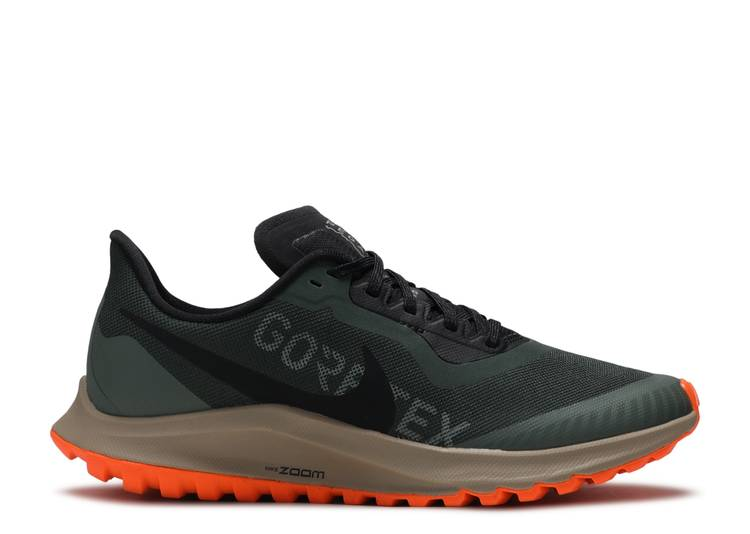 air zoom pegasus 36 goretex