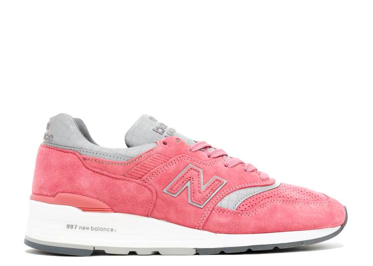 Concepts x 997 'Rose'
