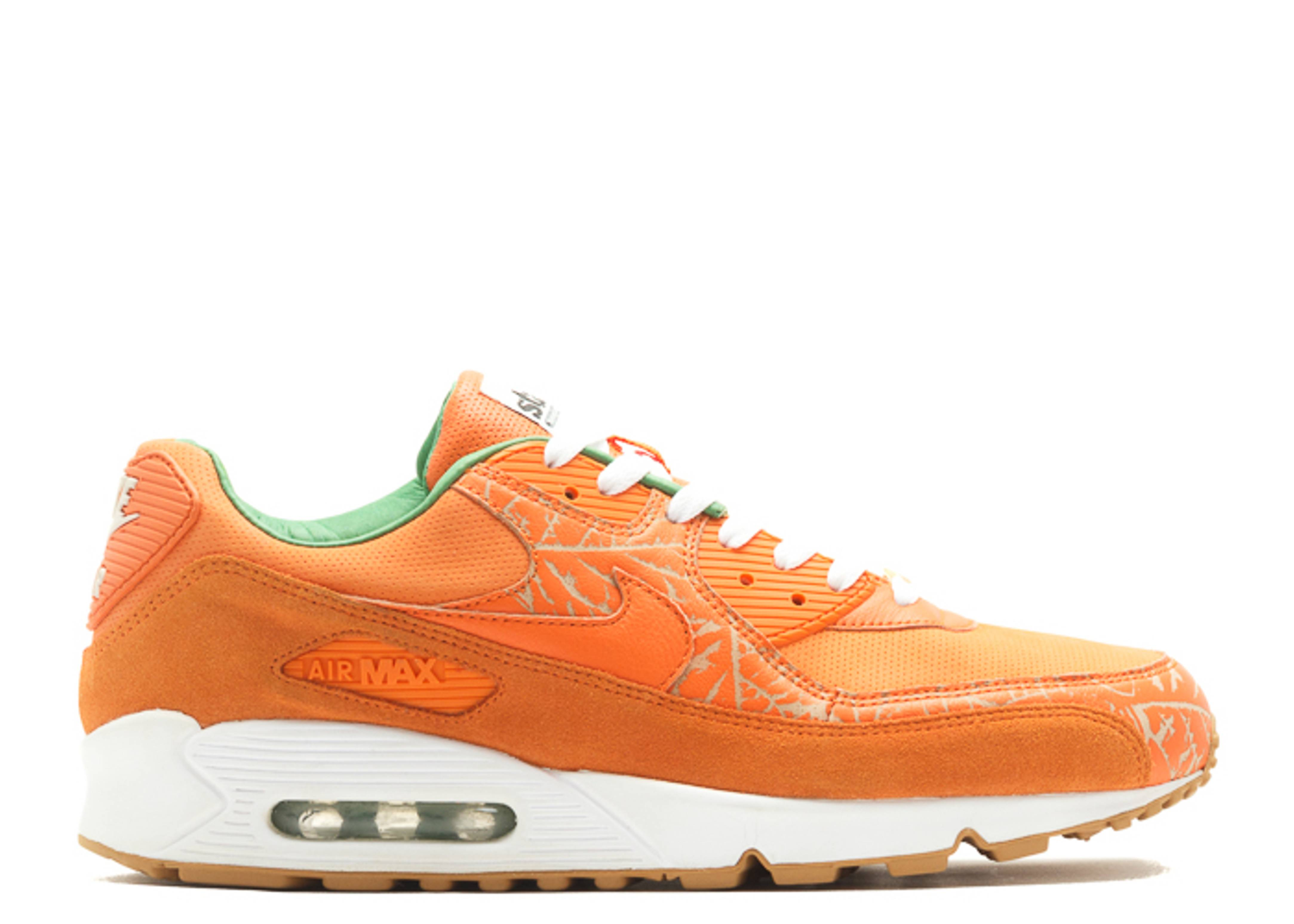 "air max 90 premium ""homegrown state magazine"""