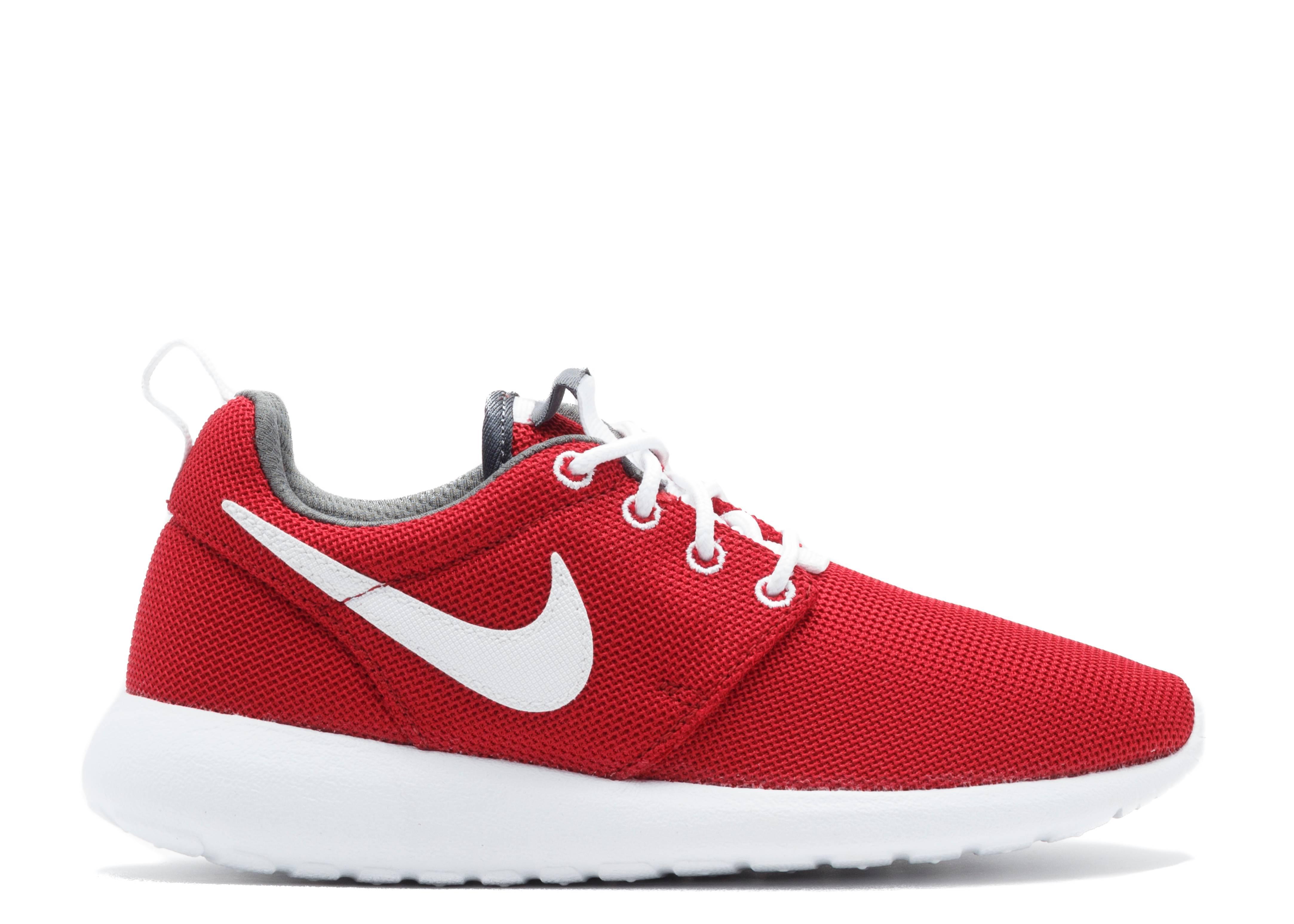 Nike Roshe Run Uomo 2015