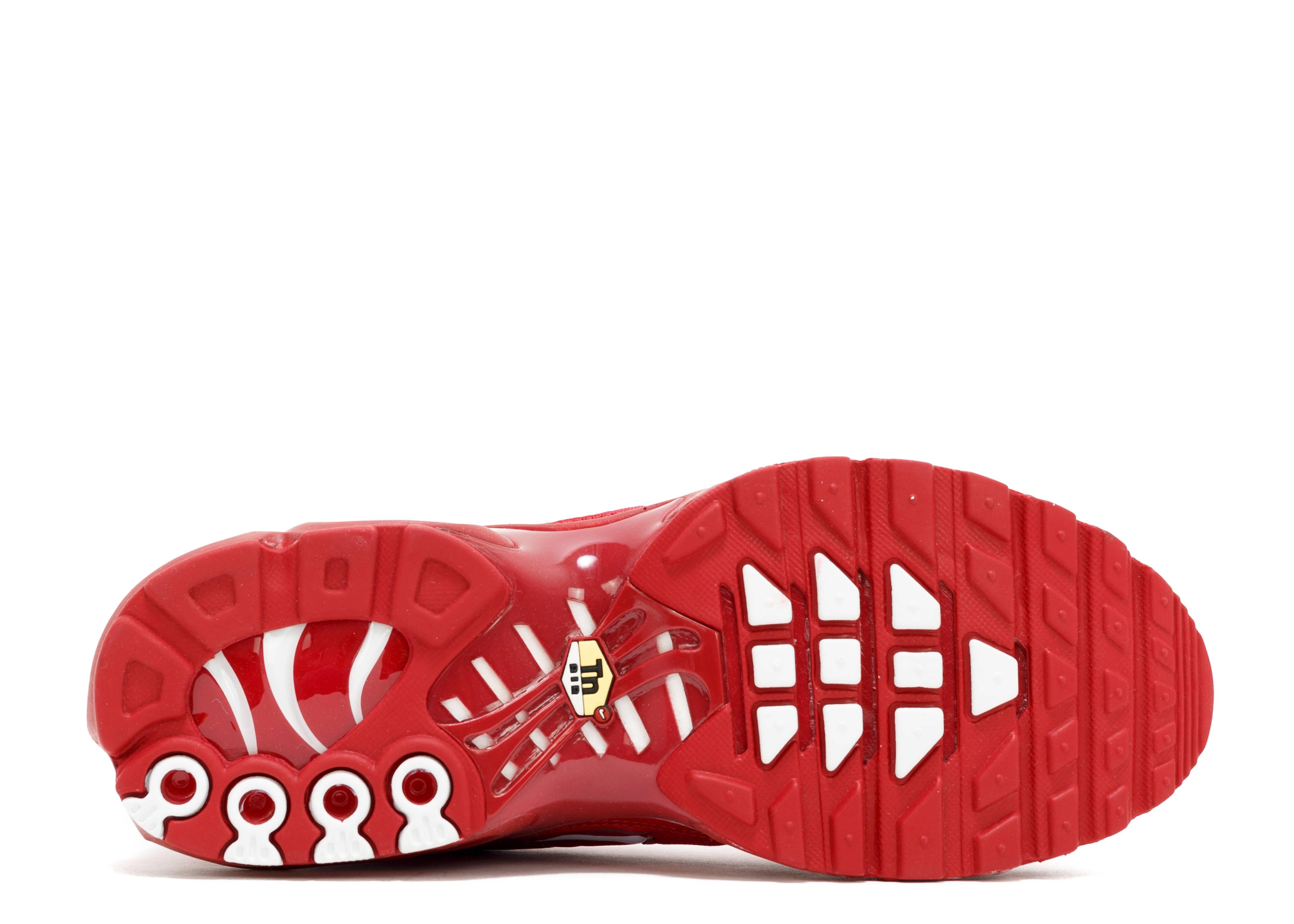 size 40 14355 6c190 ... Air Max Plus Txt - Nike - 647315 616 - pepper red white Fli ...