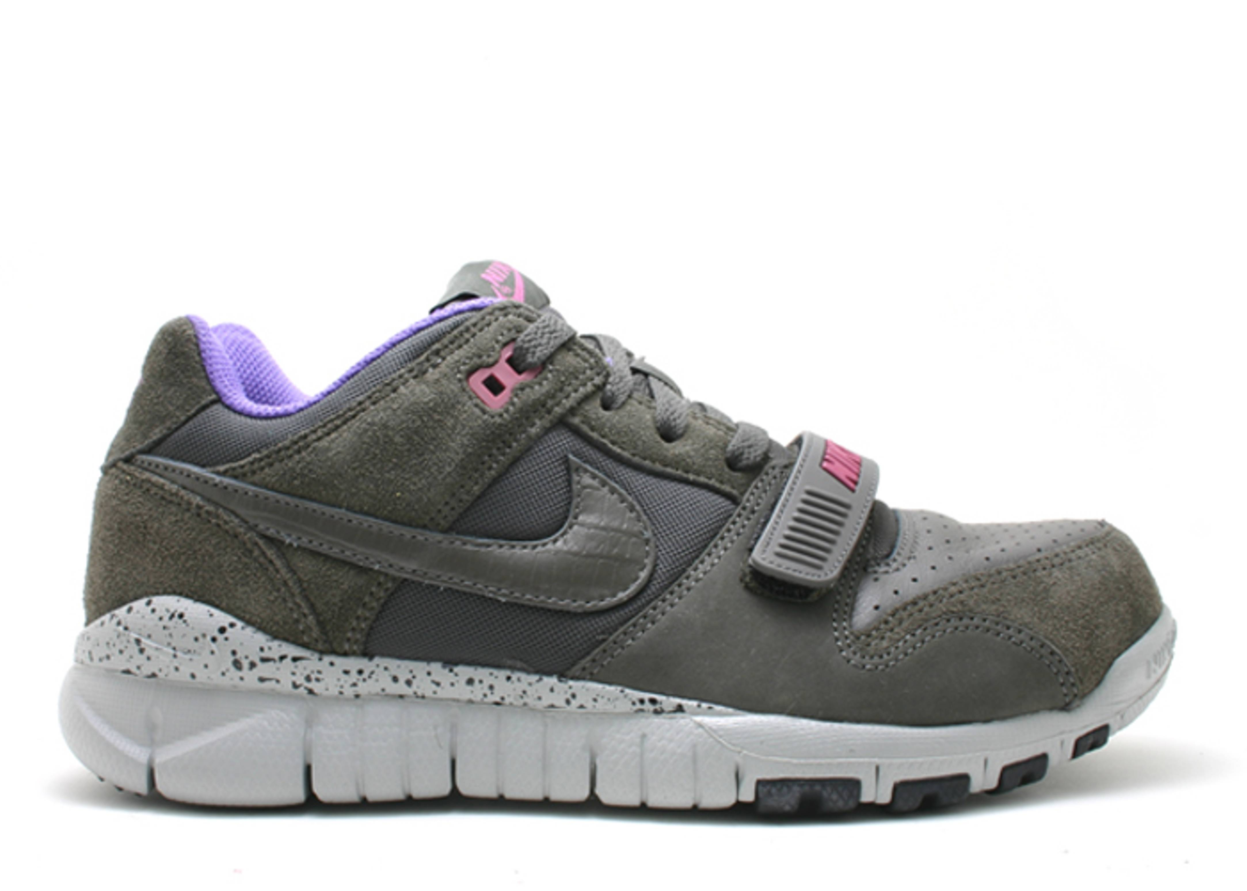 trainer dunk low