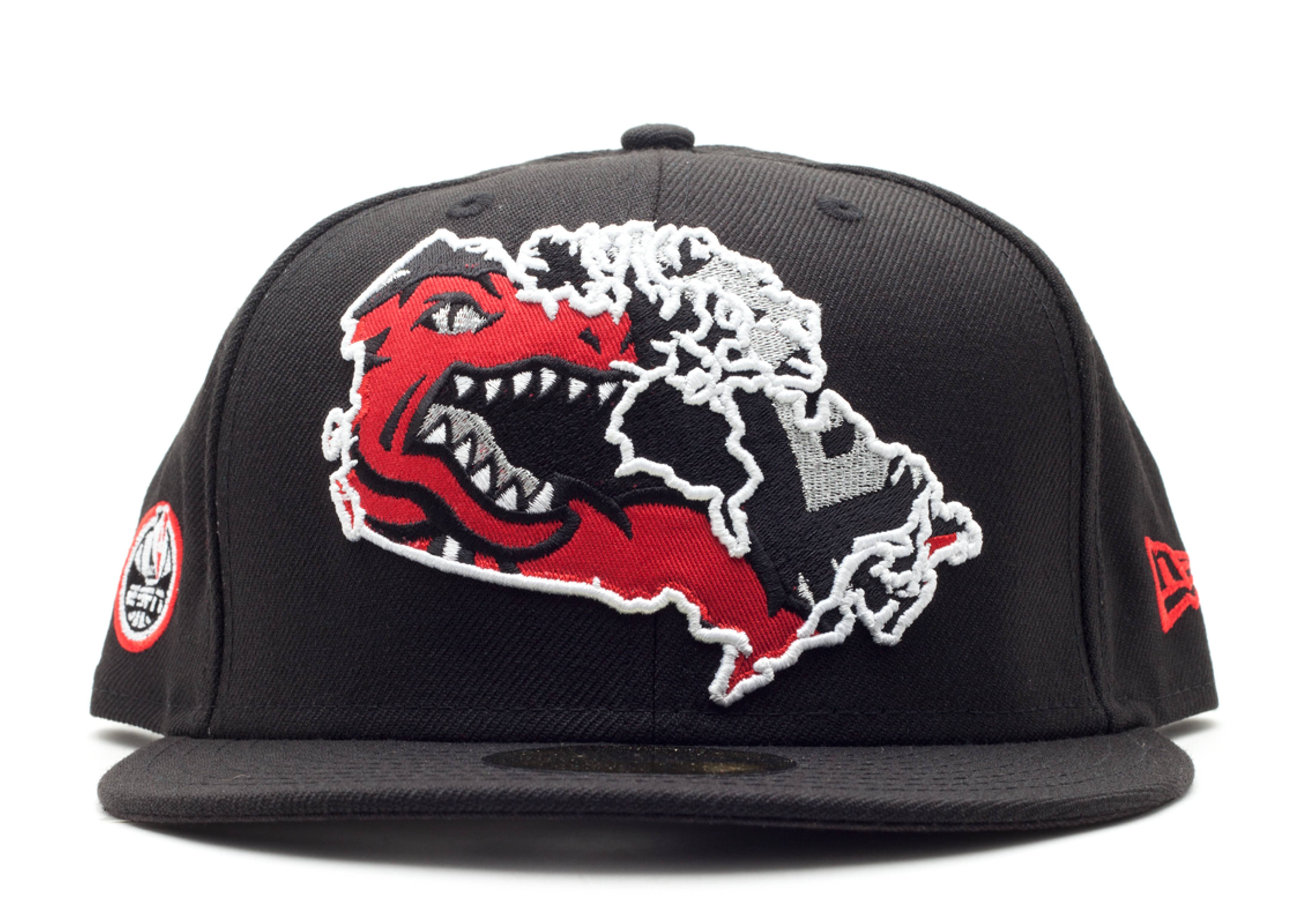 toronto raptors fitted