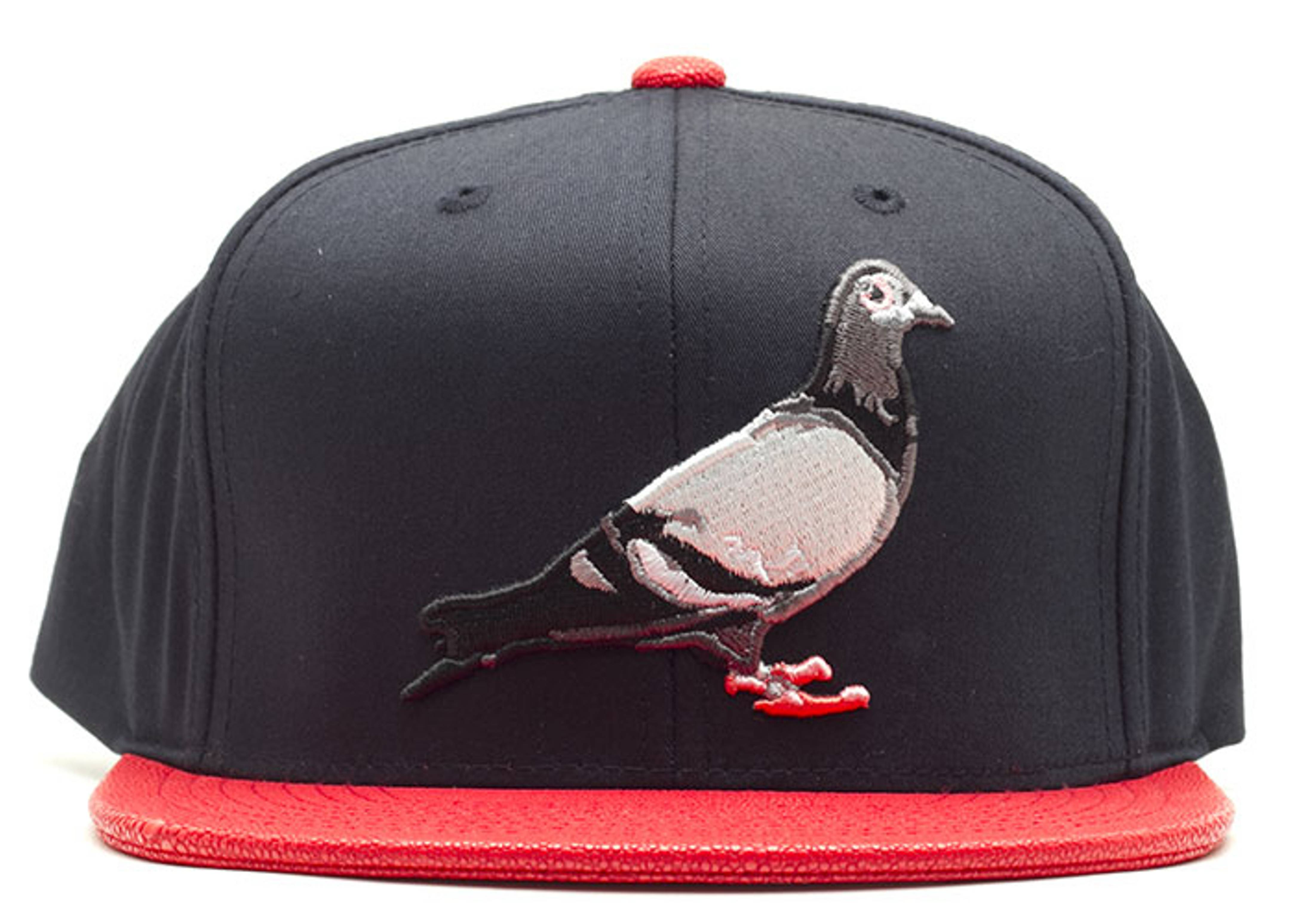 staple pigeon sting snap-back