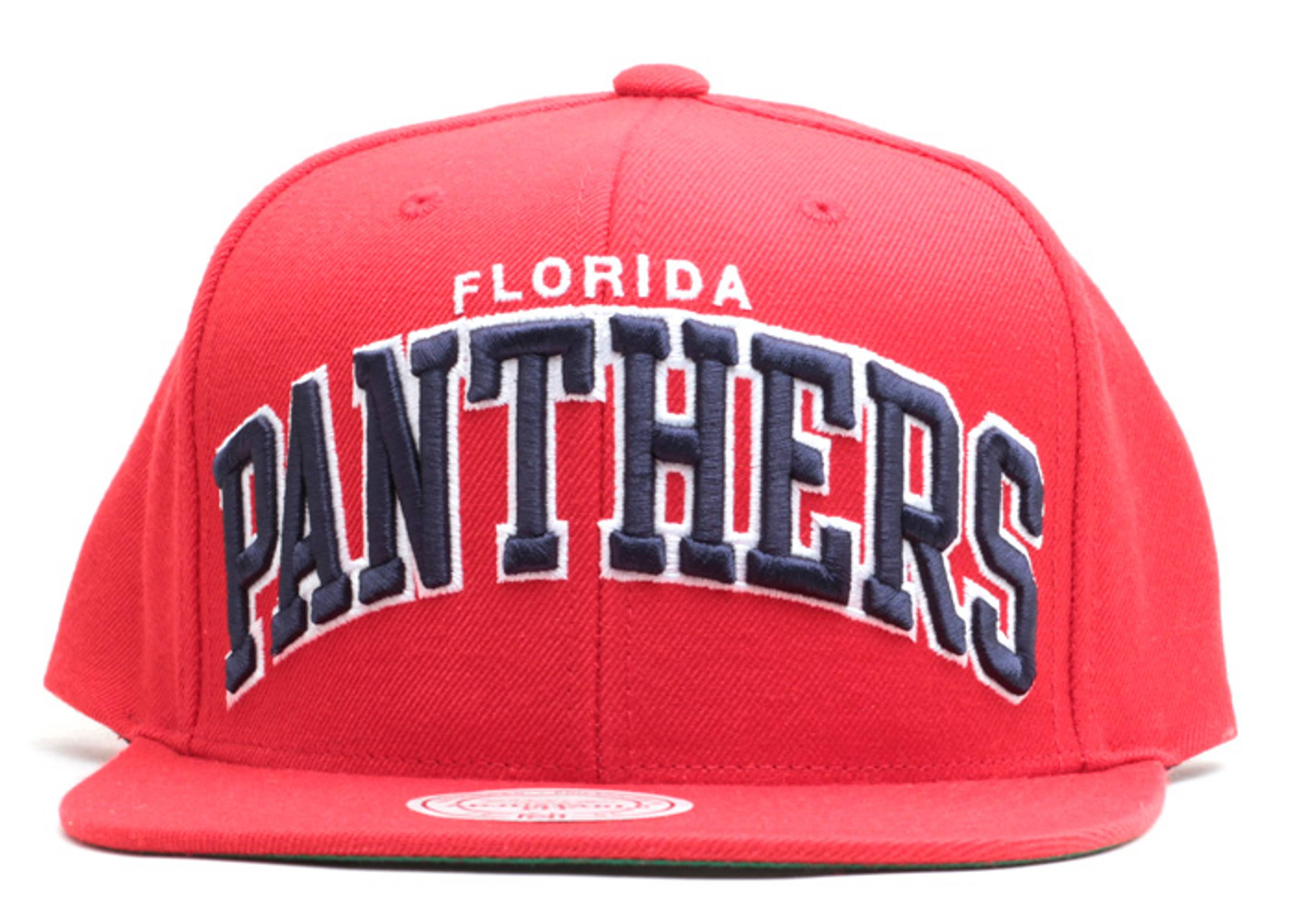 florida panthers snap-back