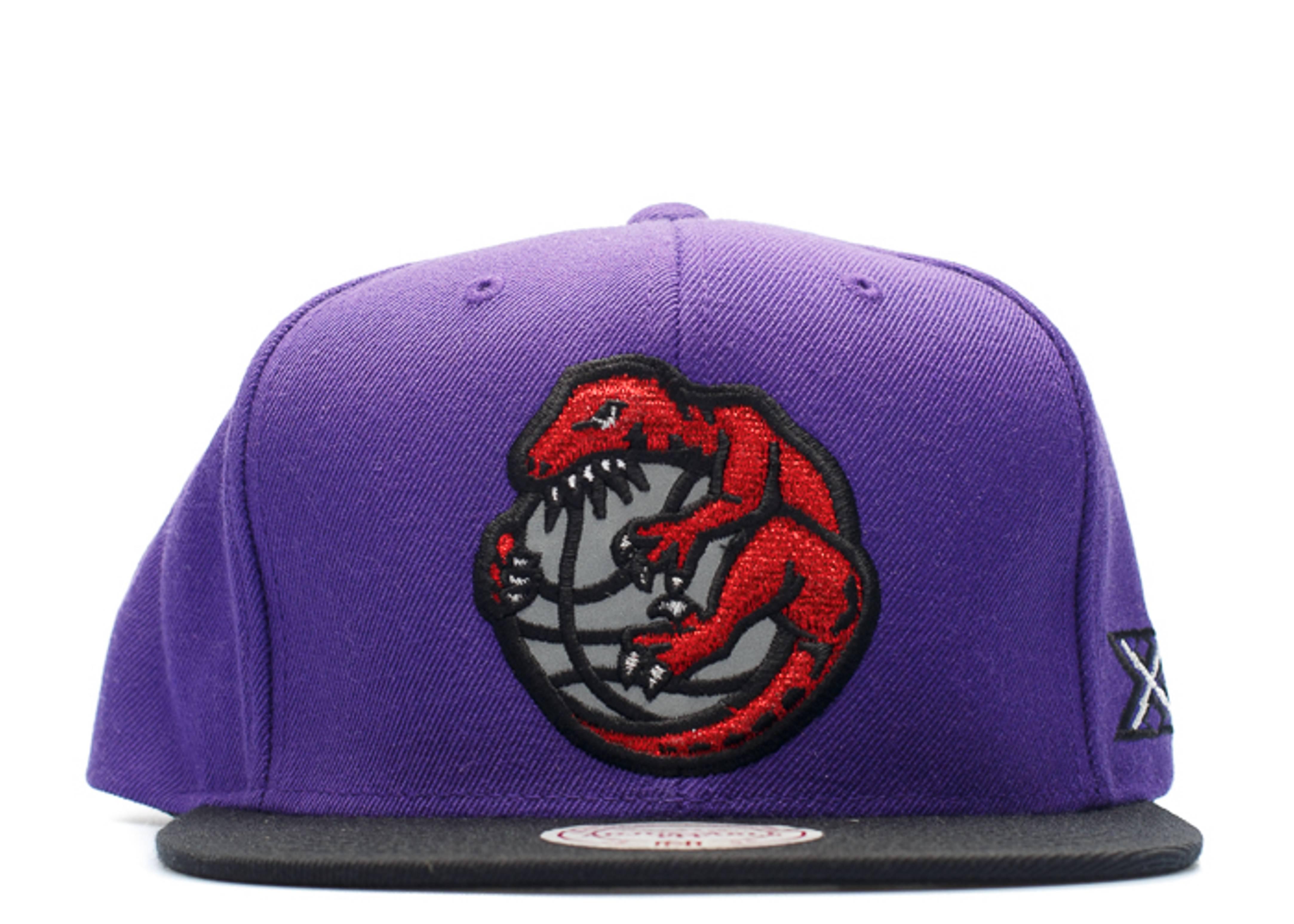 toronto raptors reflective logo snap-back