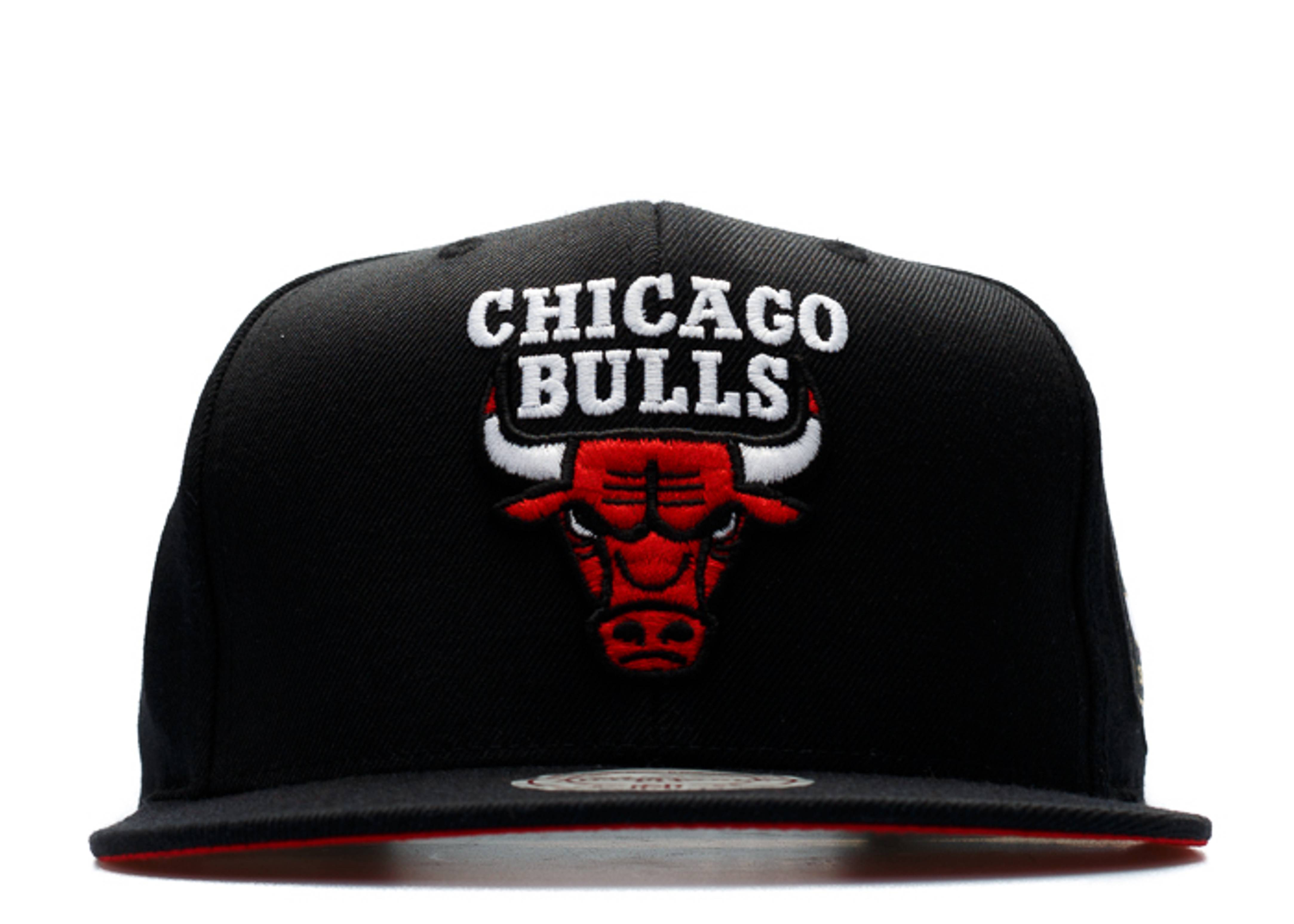 "chicago bulls snap-back ""50th anniversary"""
